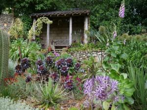 Exotic Garden Norwich