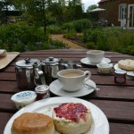 Delicious lavender scone cream tea