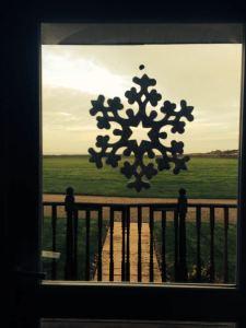 Snowflake view