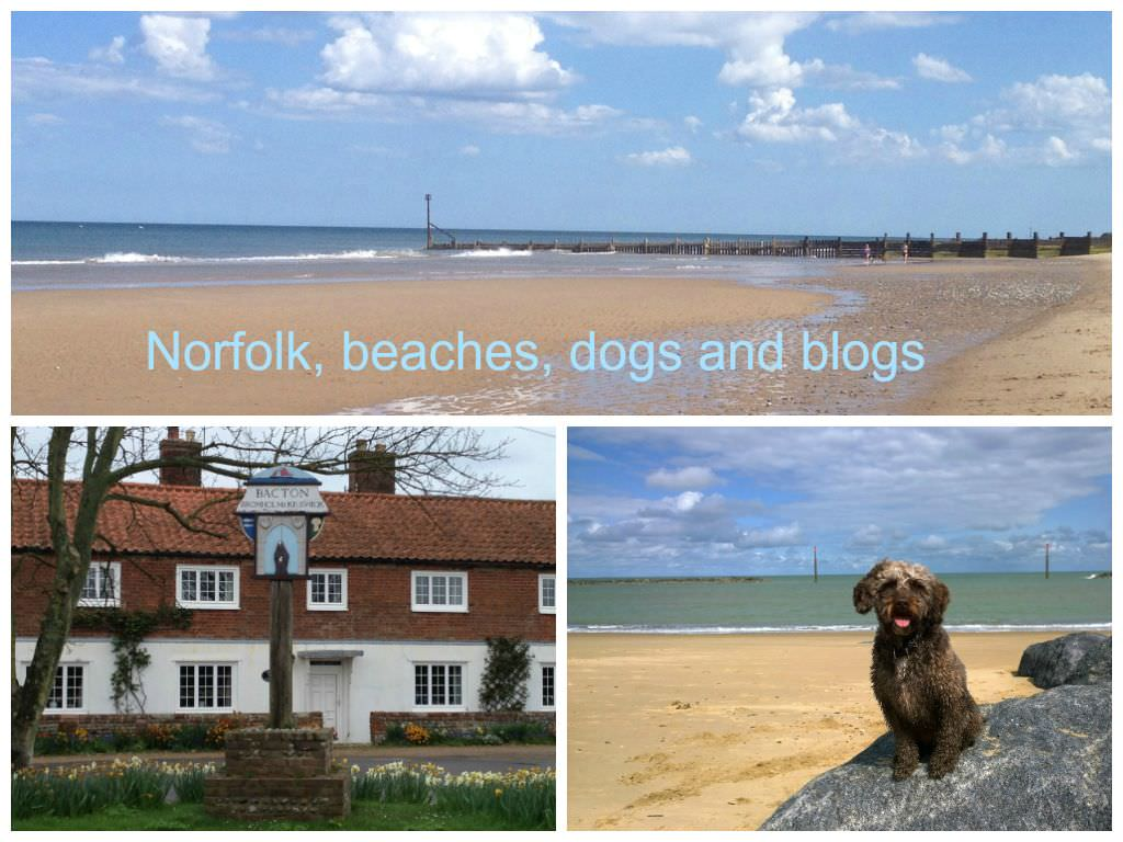 Norfolk beaches dogs and blogs